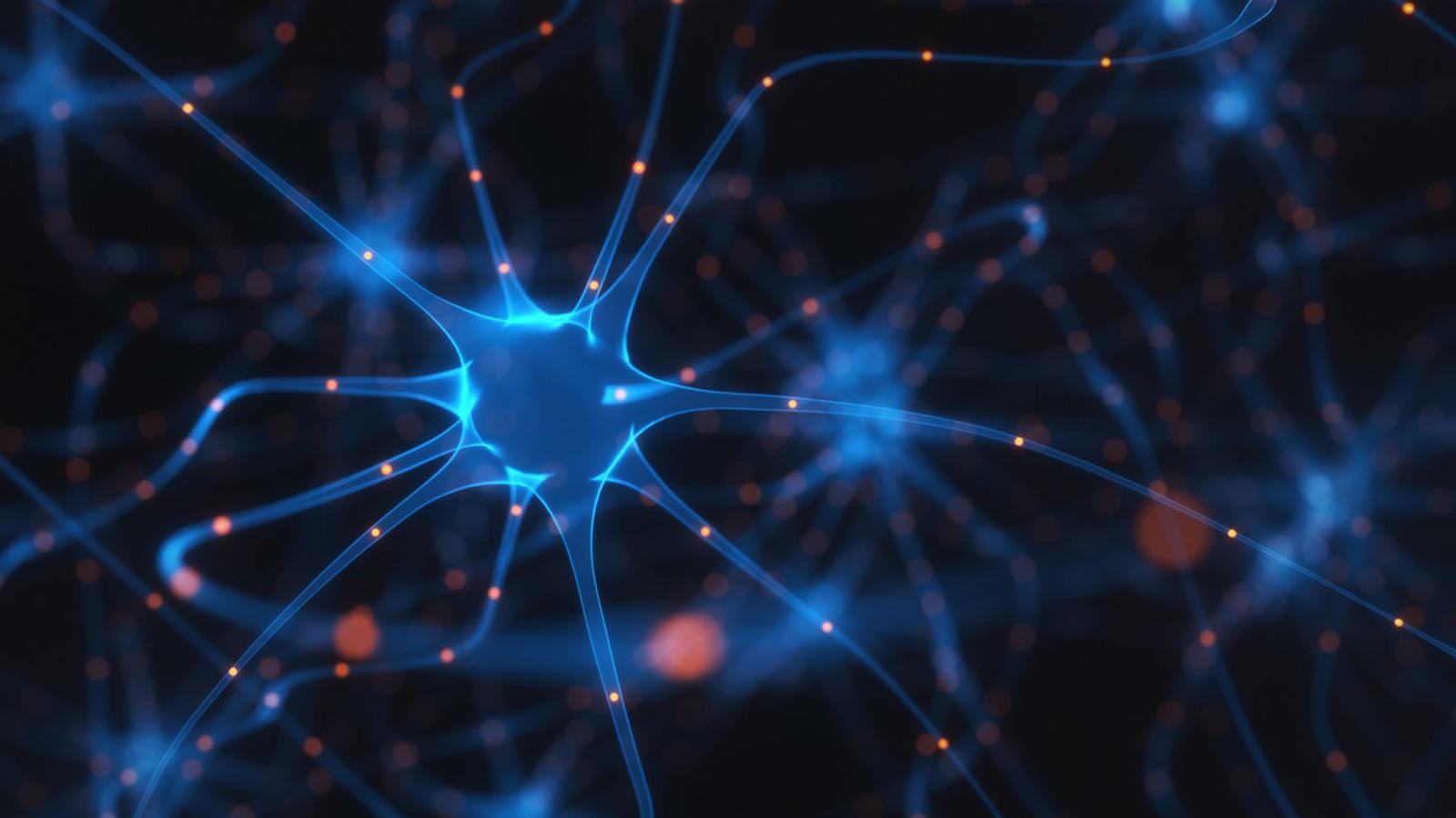 Bringing neuroscience to the masses