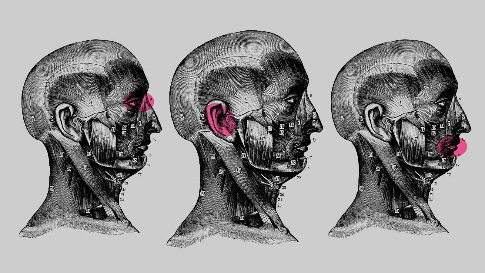 Artificial Intelligence, collective cerebella, attention and our future
