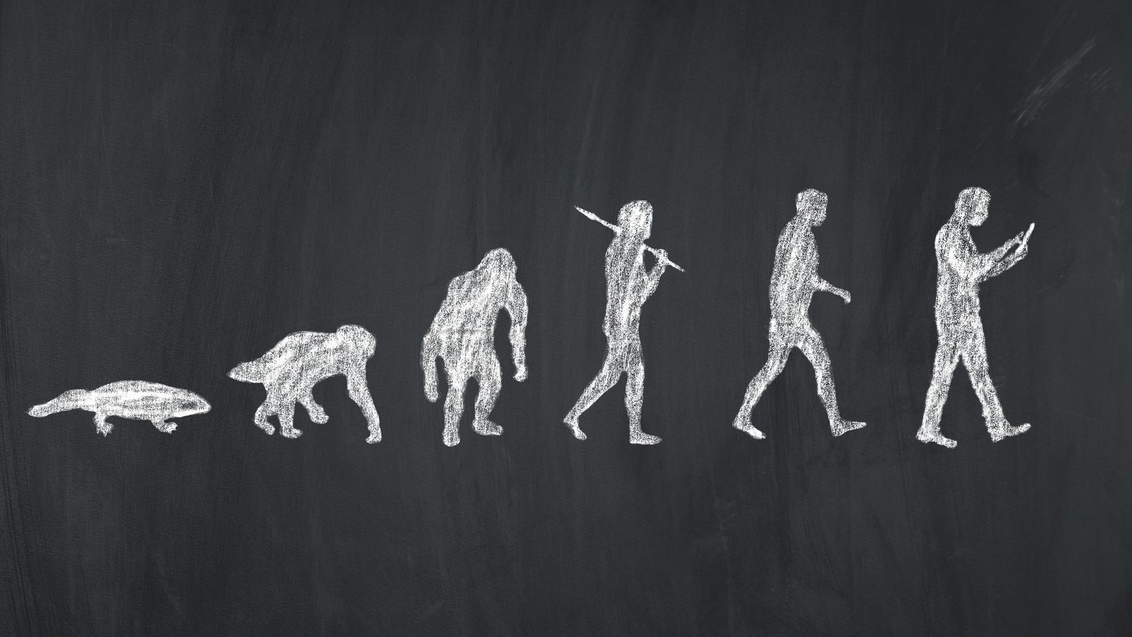 Exponential R-evolution