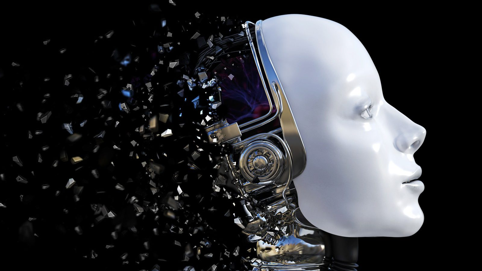 The human side of robots