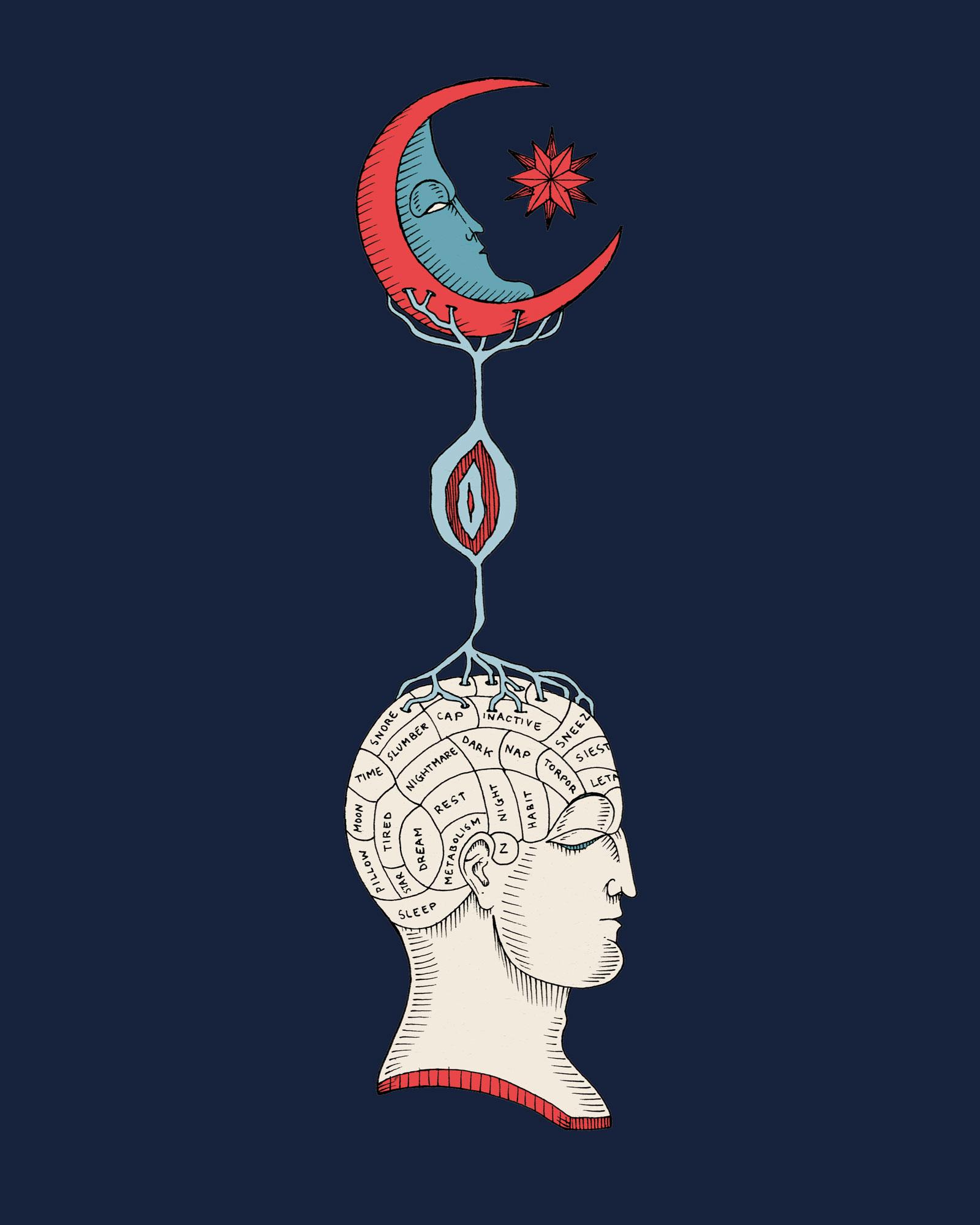 Illustration by Elisa Seitzinger
